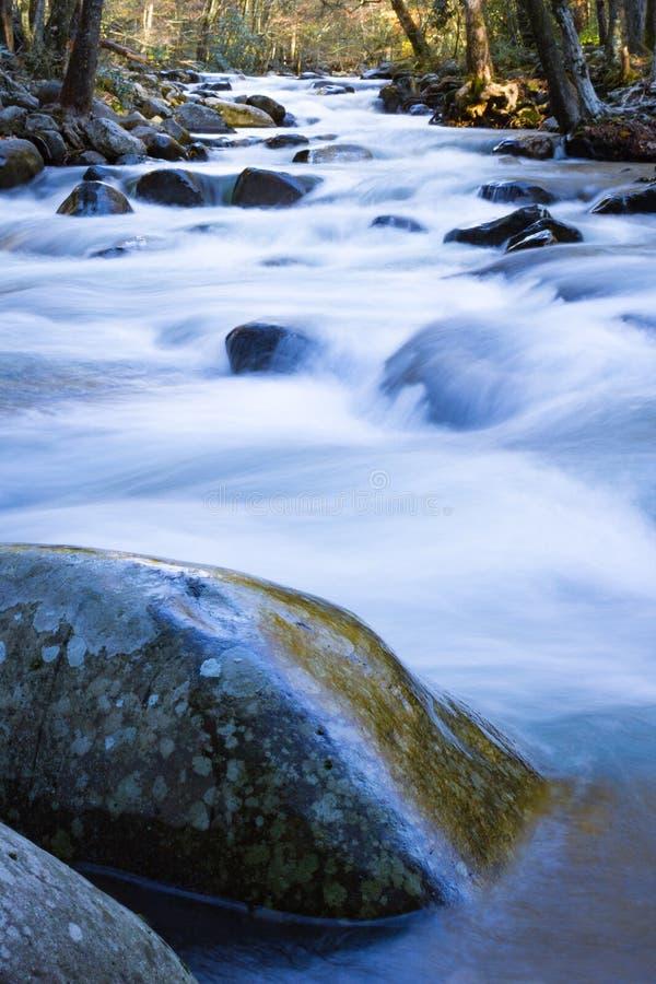 Reflexões molhadas da rocha, baixa vista de um córrego rápido da montanha na queda fotos de stock royalty free