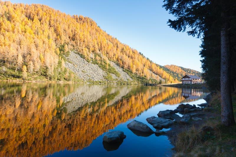 Reflexões na água, panorama do outono do lago da montanha foto de stock royalty free