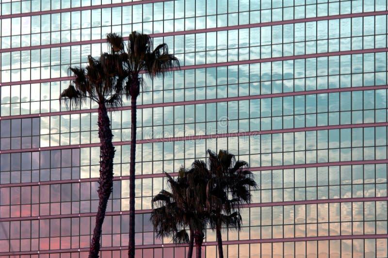 Reflexões tropicais fotografia de stock