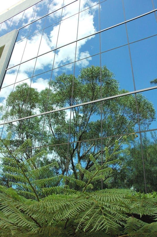 Download Reflexões verdes imagem de stock. Imagem de reflexão, árvore - 54785