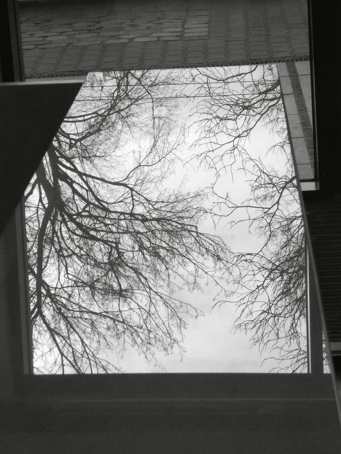reflexión fotos de archivo