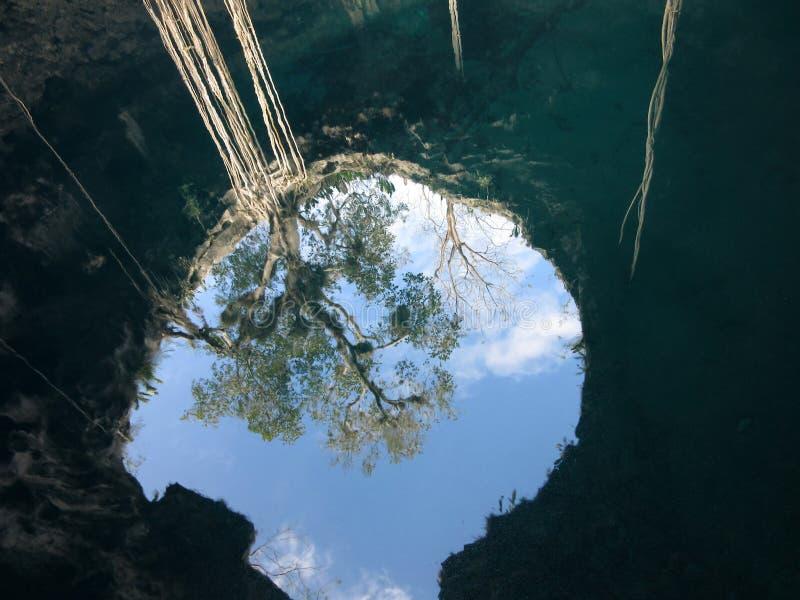 Reflexión de Cenote en Yucatán México fotos de archivo libres de regalías