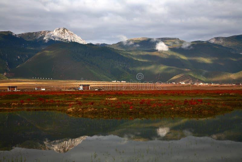Download Reflexión de la montaña foto de archivo. Imagen de paisajes - 7151894