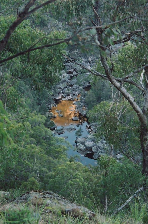 Reflexión de la montaña en una pequeña corriente en el australiano Bush imagen de archivo libre de regalías