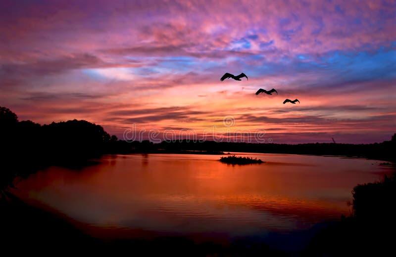 Reflexión de la puesta del sol imagen de archivo