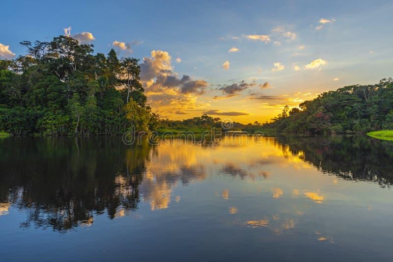Reflexión de la puesta del sol de la selva tropical del Amazonas, Ecuador fotografía de archivo