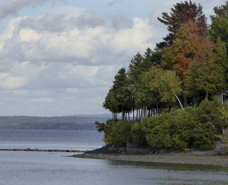 Reflexión de los árboles de la caída en el lago fotografía de archivo libre de regalías