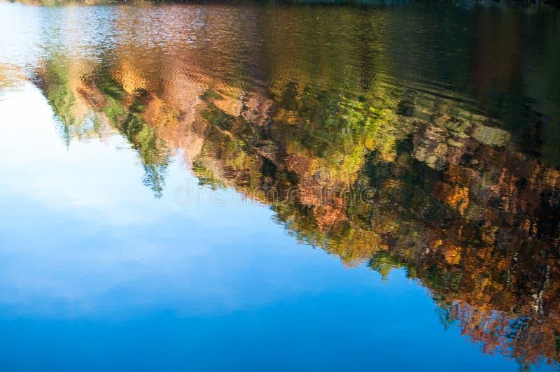 Reflexión de los árboles del otoño imagen de archivo