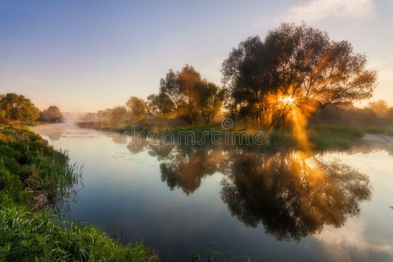 Reflexión de un cielo hermoso del amanecer en un río fotos de archivo libres de regalías