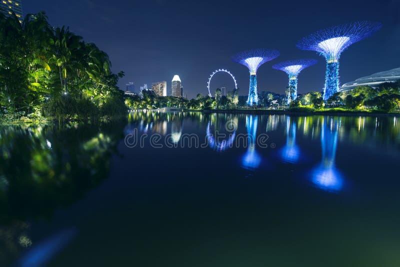 Reflexión del aviador y de Supertrees de Singapur imágenes de archivo libres de regalías