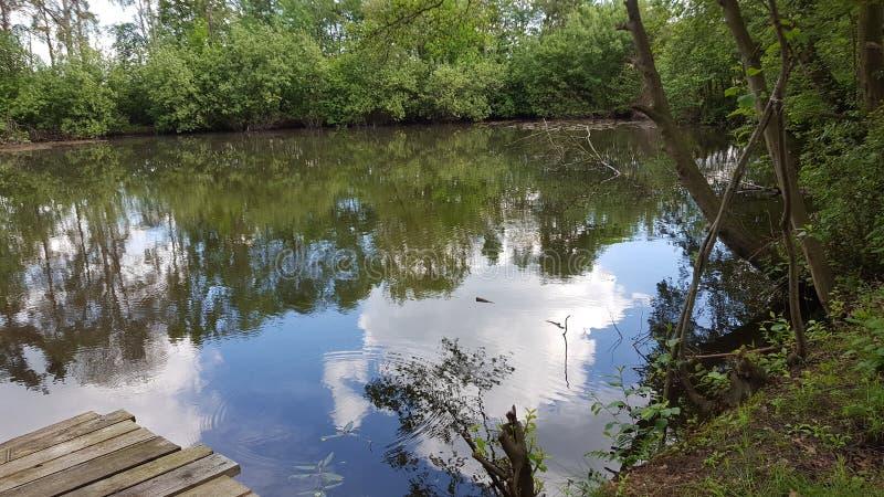 Reflexión del lago foto de archivo libre de regalías