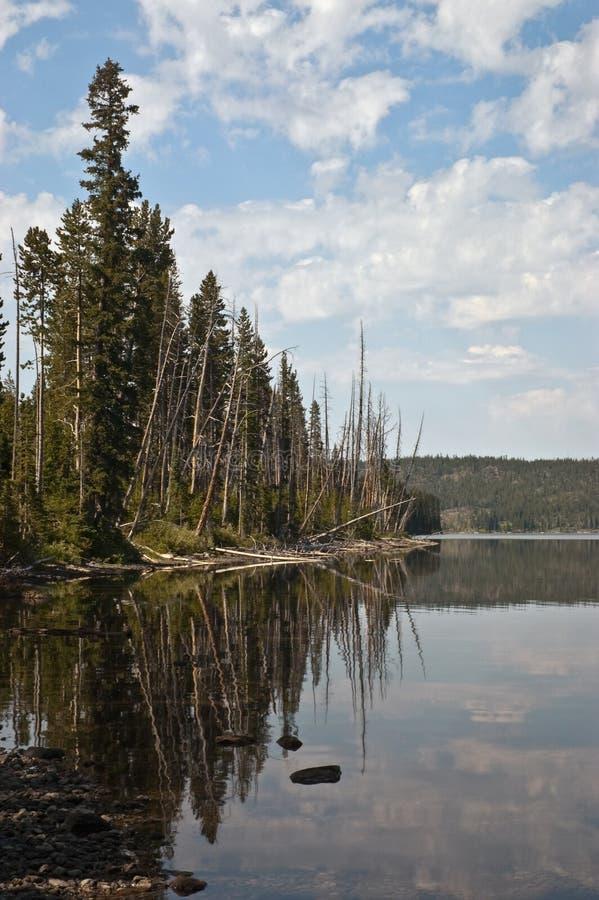 Reflexión del lago Lewis foto de archivo libre de regalías