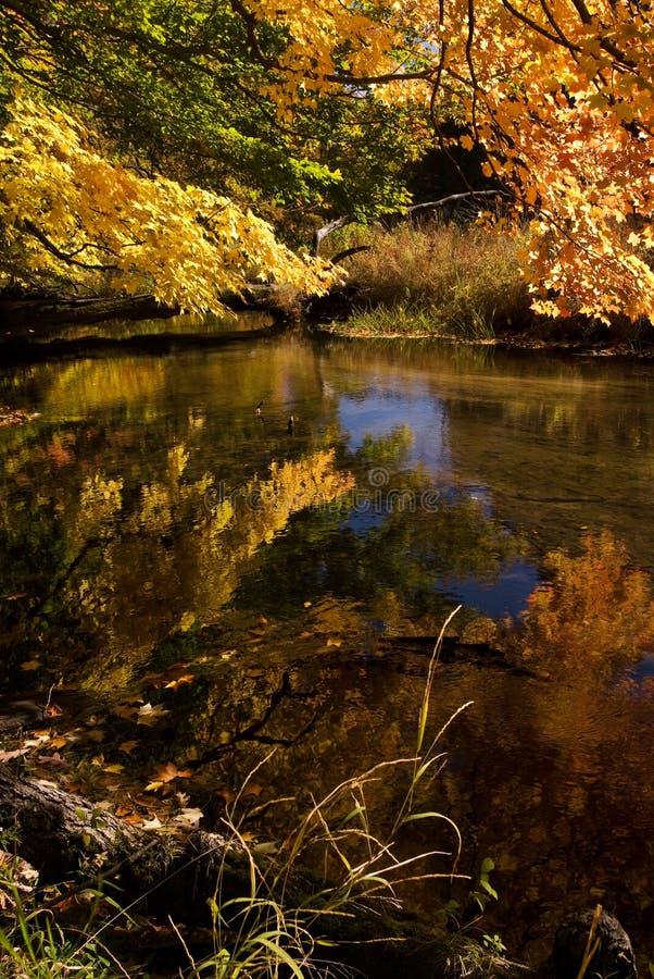 Reflexión del otoño fotografía de archivo libre de regalías