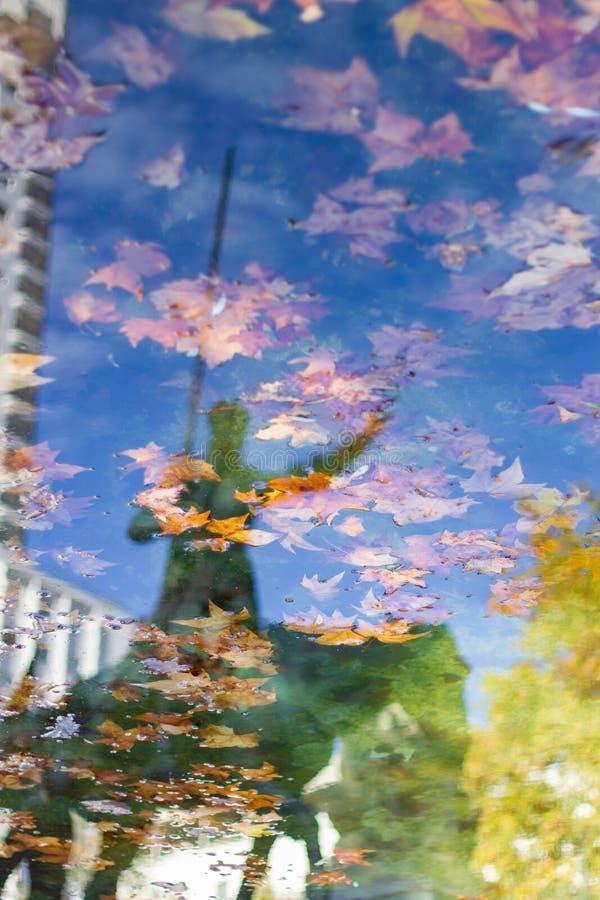 Reflexión en el agua de una estatua de Don Quixote fotografía de archivo