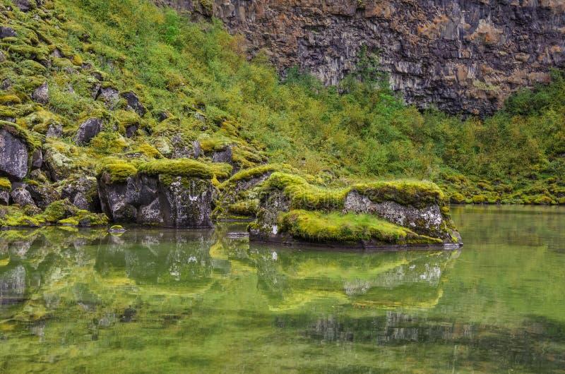 Reflexión en el lago Barranco de Asbyrgi en Jokulsargljufur p nacional imagen de archivo libre de regalías