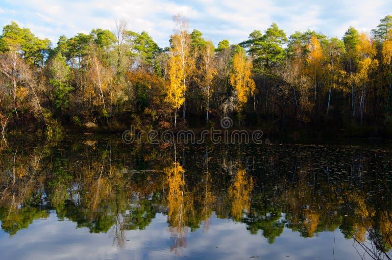 Reflexión en un lago en último otoño fotografía de archivo