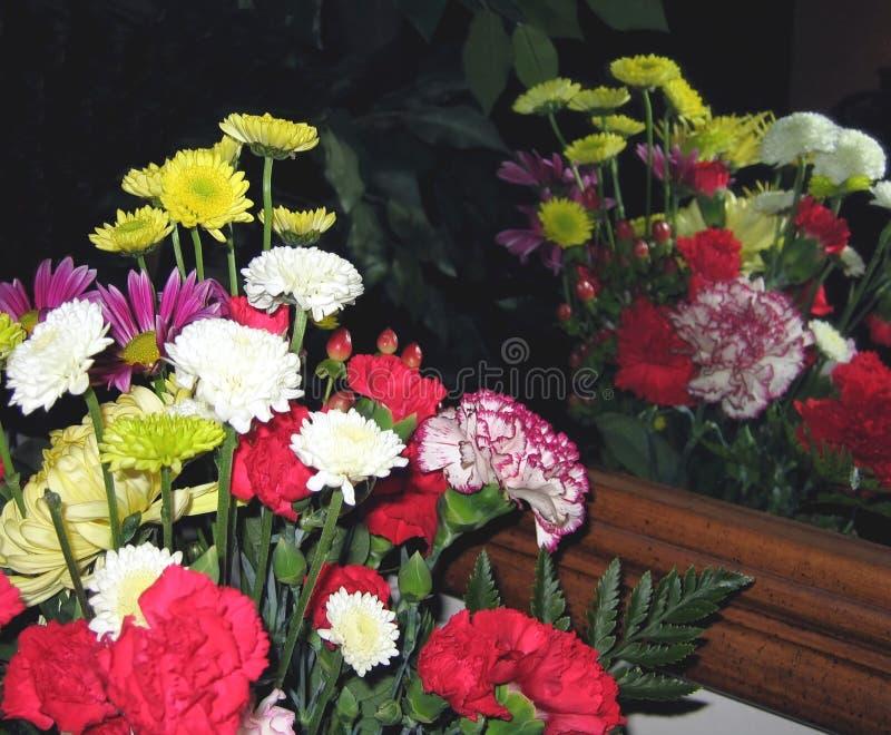 Reflexión Floral Imagen de archivo libre de regalías