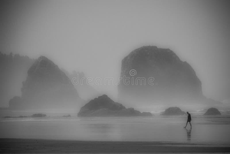 Reflexión solitaria fotografía de archivo