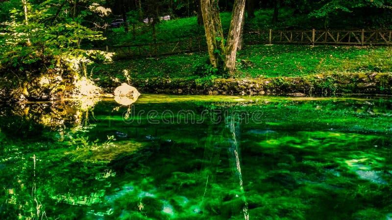 reflexion lizenzfreie stockfotografie