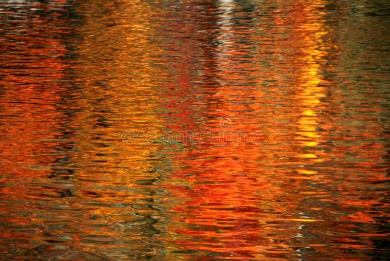 reflexion arkivbilder