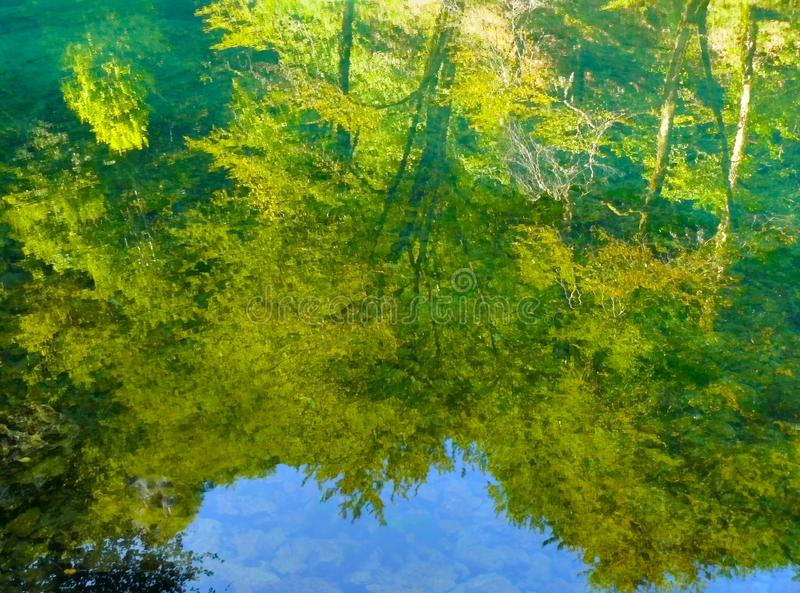 Reflexion auf dem Frühling des Flusses Kupa. stockfotos