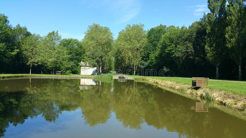 Reflexion auf dem Teich stockfoto