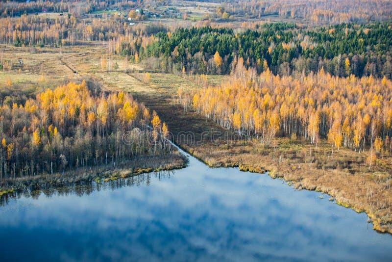 Reflexion av cirrusmolnmoln i en liten skogsjö i den Pushkin bergMuseum-reserven royaltyfri fotografi