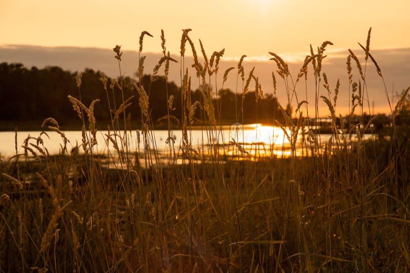 Reflexion av en inställning Sun fotografering för bildbyråer