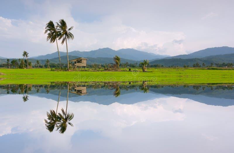 Reflexion av ett lantligt landskap i Kota Marudu, Sabah, östliga Malaysia royaltyfria foton