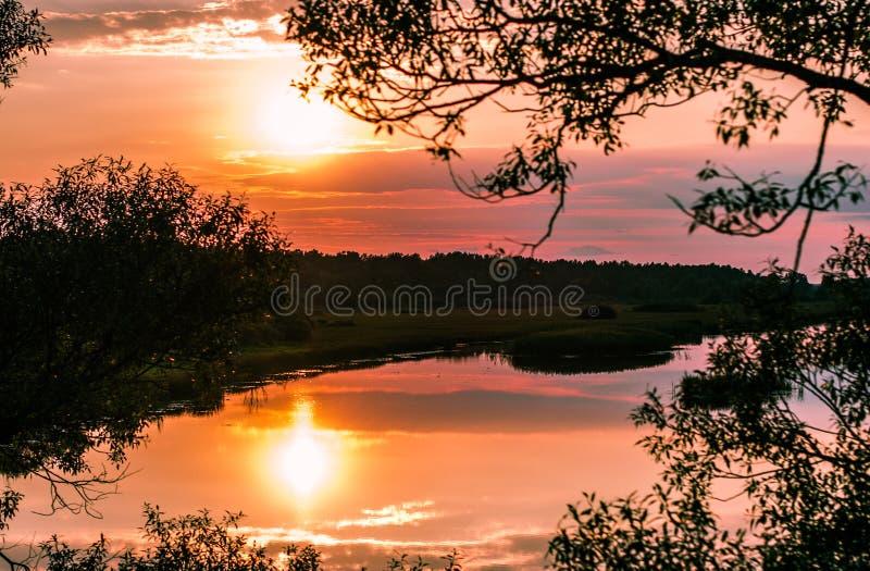 Reflexion av inställningssolen i floden royaltyfri fotografi