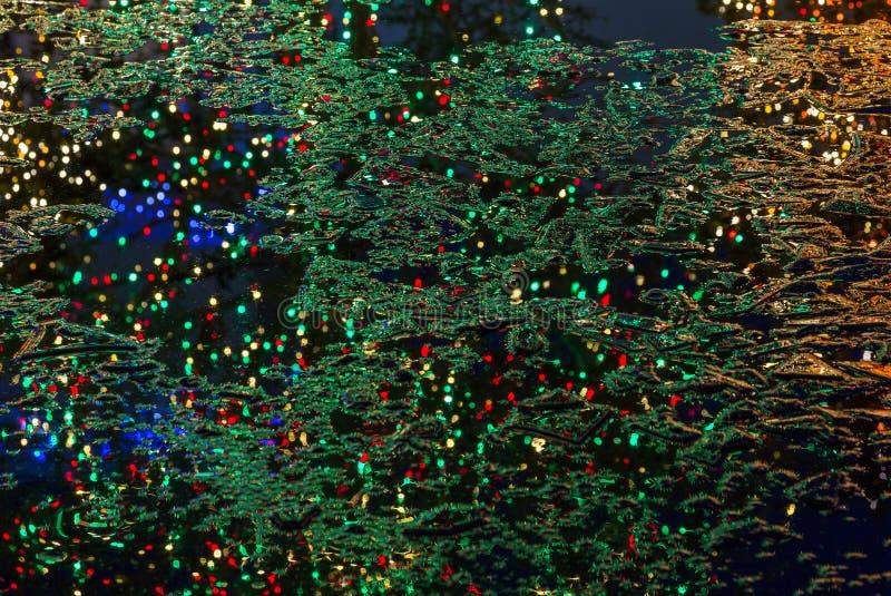 Reflexion av julträd i det djupfrysta dammet royaltyfri fotografi