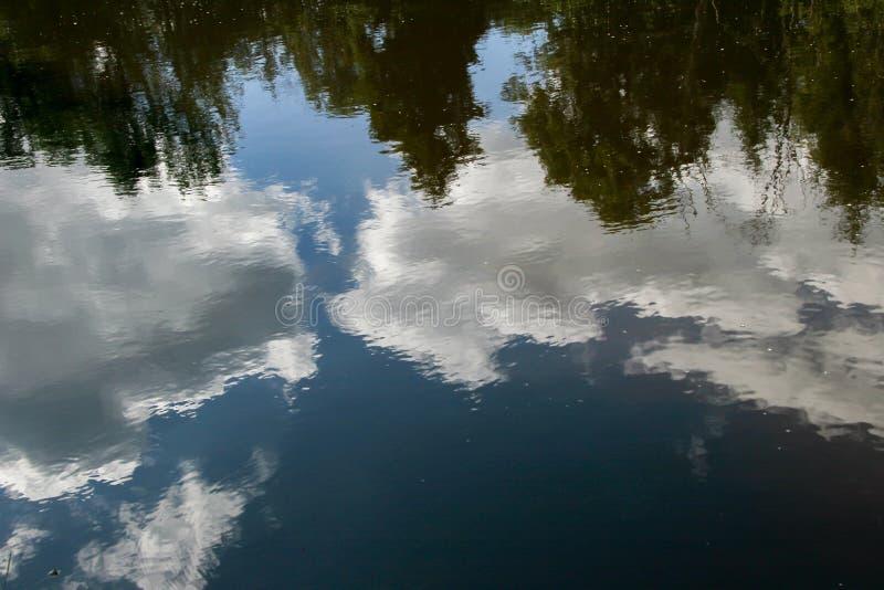 Reflexion av moln och träd i vattnet av floden royaltyfri fotografi