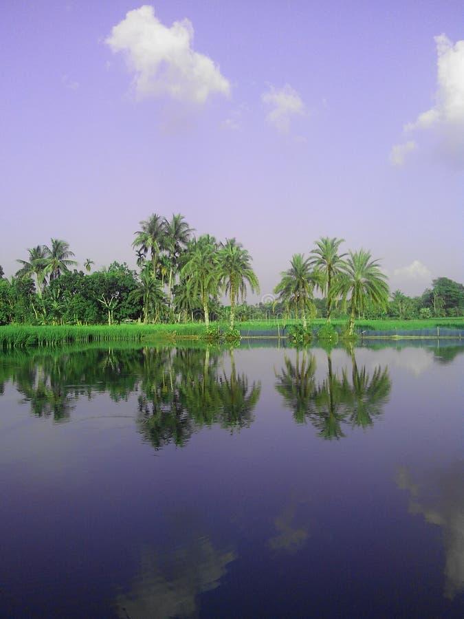Reflexion av naturen arkivfoton