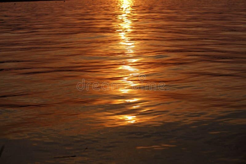 Reflexion av solljus under solnedgång i rent vatten royaltyfria bilder