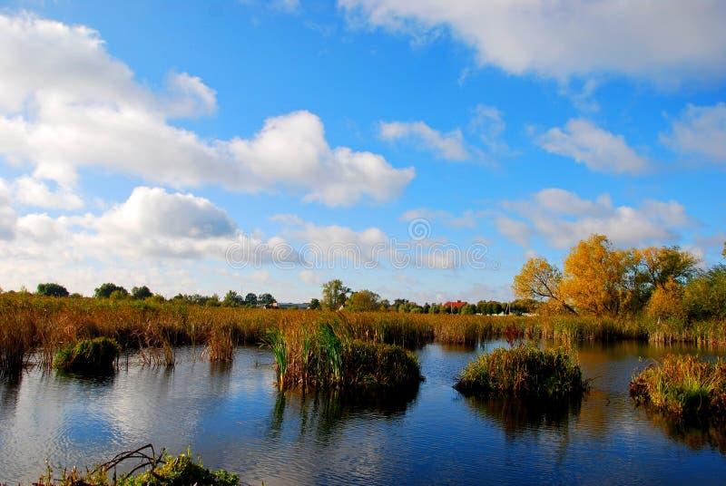 Reflexion av vita fluffiga moln i det blåa vattnet av sjön royaltyfri fotografi