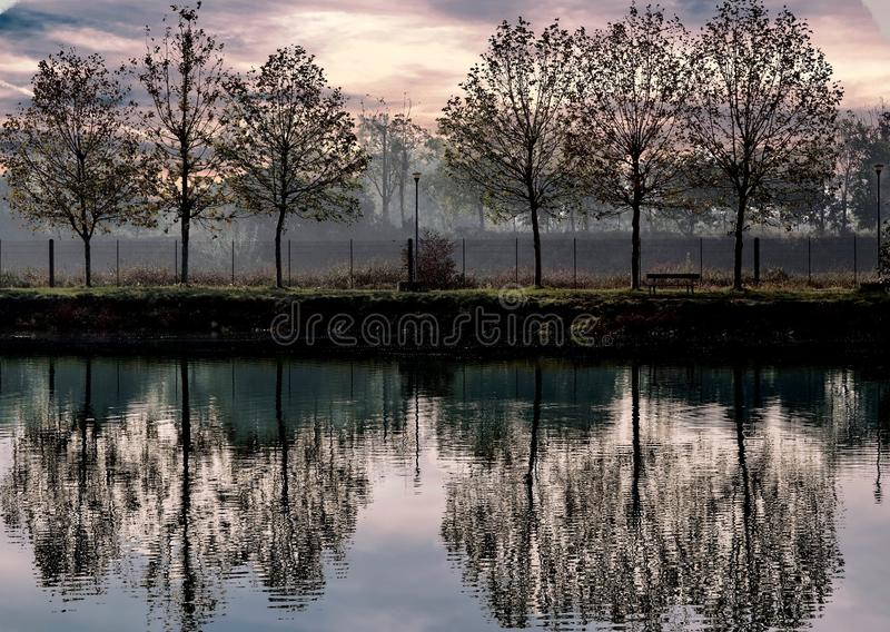 Download Reflexion Des Baums Auf Wasser Stockfoto - Bild von ruhe, teich: 106800836