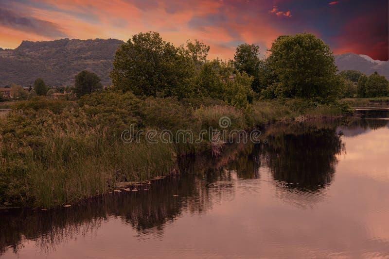 Download Reflexion Des Baums Auf Wasser Stockfoto - Bild von reflect, schön: 106801464