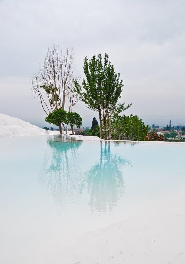 Reflexion eines Baums in einem weißen See lizenzfreies stockbild