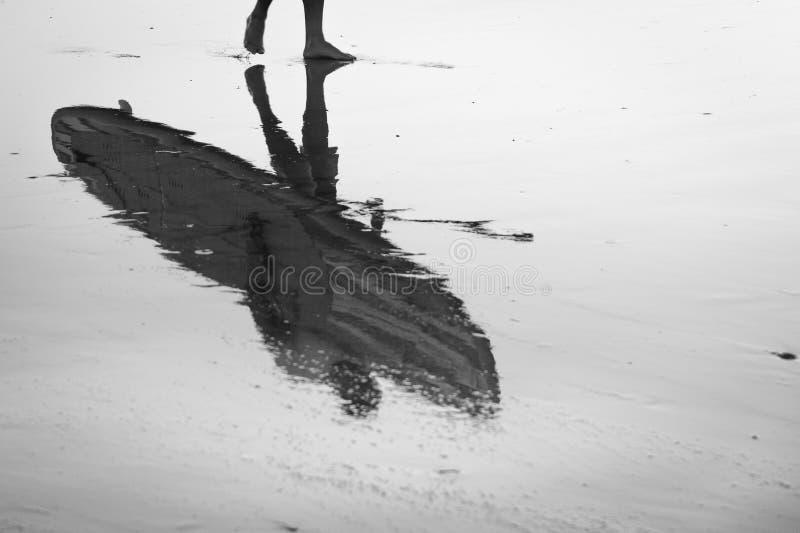 Reflexion eines Surfers mit seinem stehen oben das Surfbrettherauskommen stockfotos
