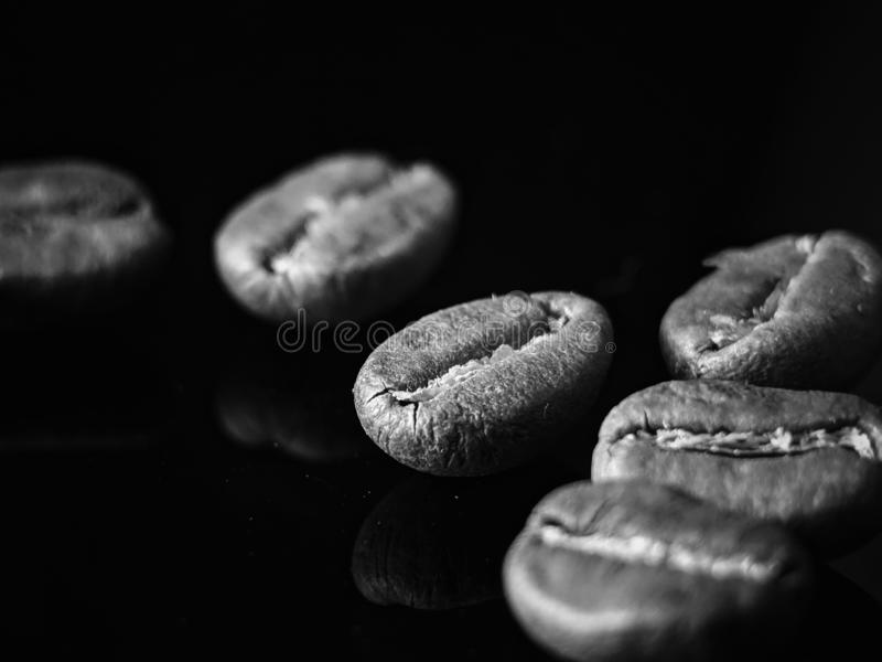 Reflexion för kaffebönor på svartvitt arkivbilder