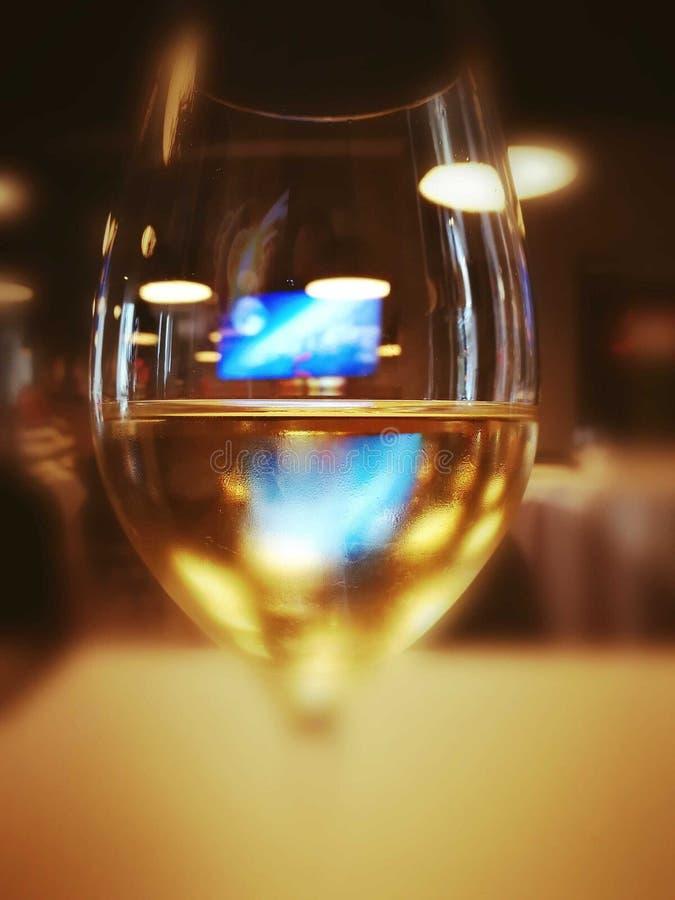 Reflexion för vinexponeringsglas royaltyfri bild