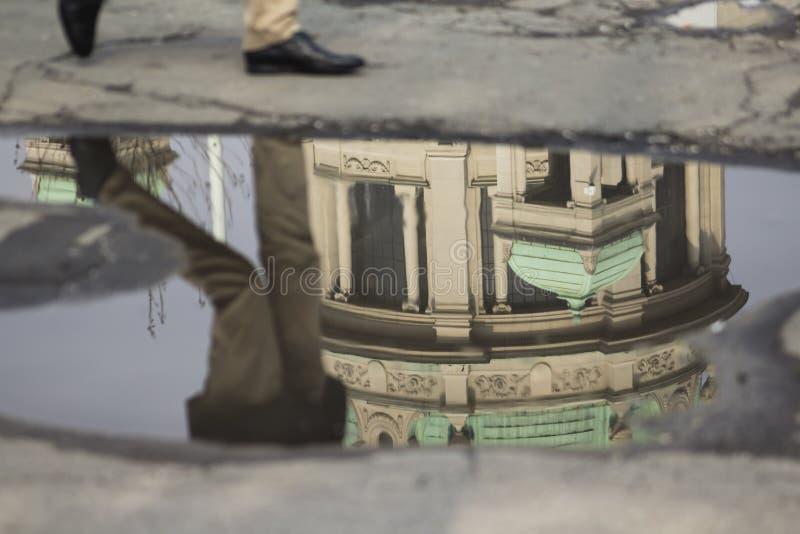 Reflexion i pölen efter regnet royaltyfri bild