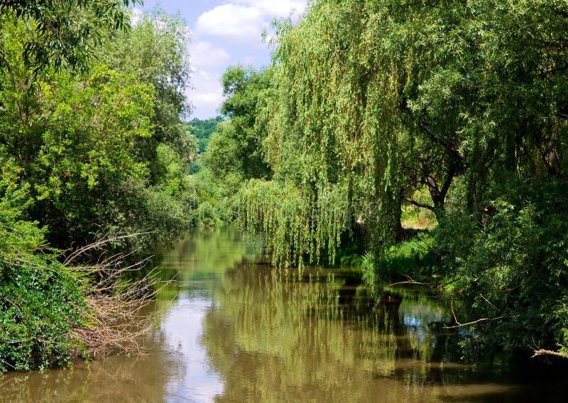 Reflexion im Fluss lizenzfreie stockfotografie