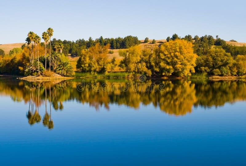 Reflexion im Wasser stockfotos