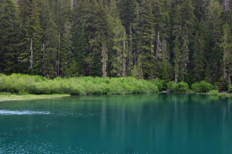 Reflexion lake arkivbilder