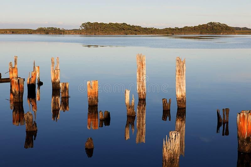 Reflexion Macquarie-Bucht stockfoto
