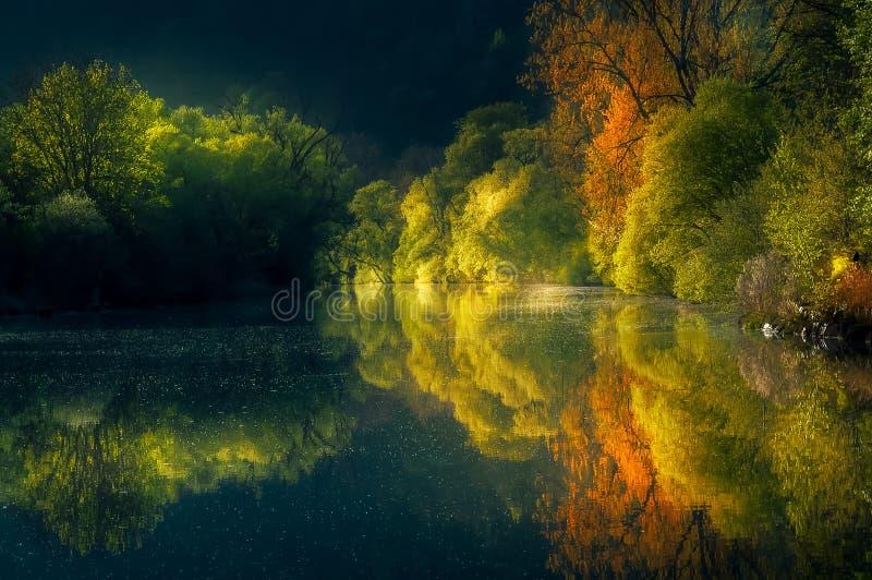 Reflexion på floden arkivbild