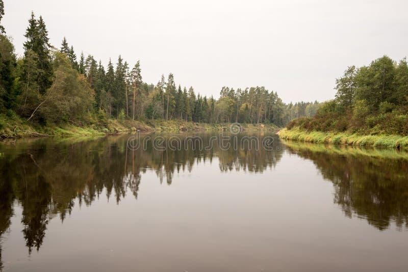 Reflexion von Wolken im See lizenzfreie stockfotografie