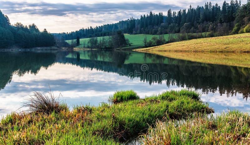 Reflexion von Wolken und von Wald im Zlatna See, Slowakei stockfotografie