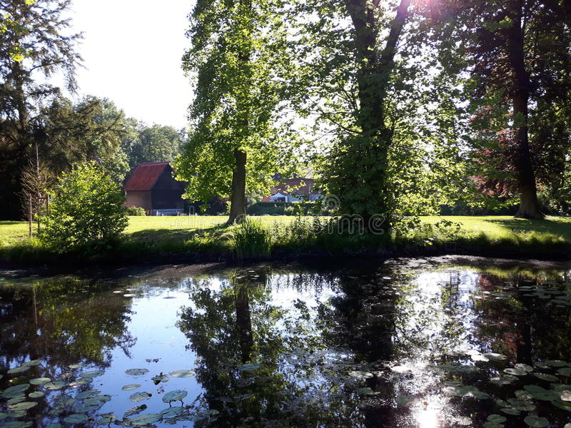 Reflexionen auf einem Fluss in der Sonne lizenzfreies stockbild